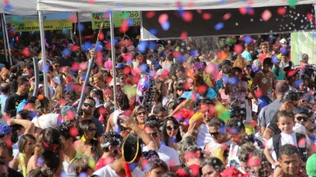 Carnaval 2014 – Baratinha